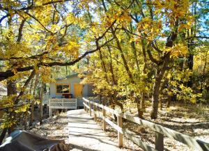 obrázek - LOCATION! Nature Lovers Getaway - Close to Historic Downtown