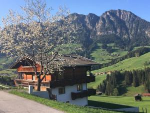 Traditionelles Marchanger -Haus in den Bergen - Hotel - Alpbach