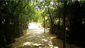 Tiandu Rainforest Resort, Курортные отели  Санья - big - 15