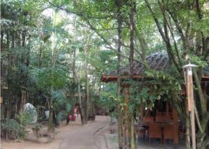 Tiandu Rainforest Resort, Курортные отели  Санья - big - 25