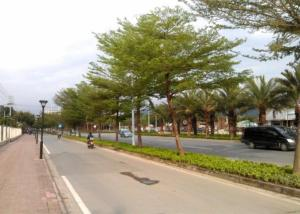 Tiandu Rainforest Resort, Курортные отели  Санья - big - 23