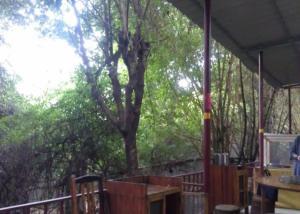Tiandu Rainforest Resort, Курортные отели  Санья - big - 21