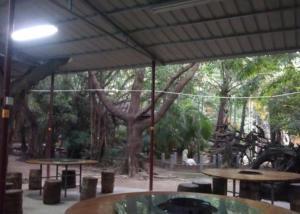 Tiandu Rainforest Resort, Курортные отели  Санья - big - 20