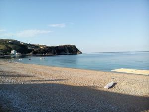 Guest House Solive, Penziony  Himare - big - 12