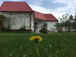 Mini Hotel Furmi, Inns  Skhidnitsa - big - 63
