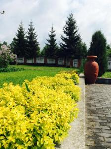 Mini Hotel Furmi, Inns  Skhidnitsa - big - 58