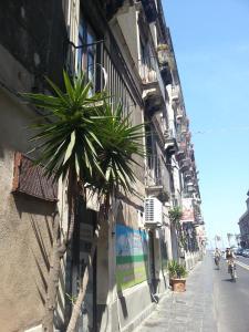 Appartamento Catania Centro - AbcAlberghi.com