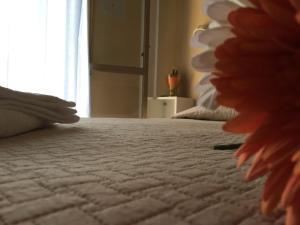 Hotel Fucsia, Hotels  Riccione - big - 84