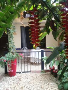 Hotel Rancha Azul, Bed and breakfasts  Alajuela - big - 47