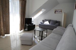 Apartament AMS A12