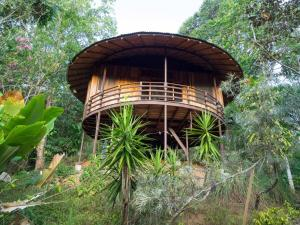 Paradise Lodge, Platanillo