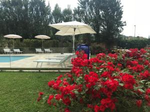 Residence Prunali, Apartmánové hotely  Massarosa - big - 31