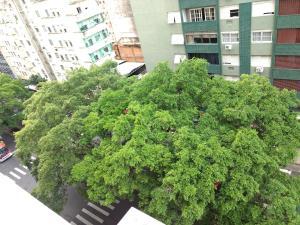 Lugar todo no Centro II-próx. a Santa Casa e UFRGS, Ferienwohnungen  Porto Alegre - big - 10