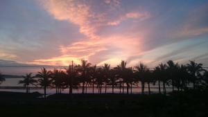 Auberges de jeunesse - Coconut Beach Homestay