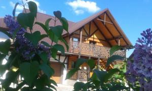 Cottage Palitra - Yablunytsya