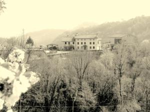 Agriturismo al Ciliegio