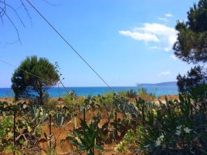 obrázek - Green Beach