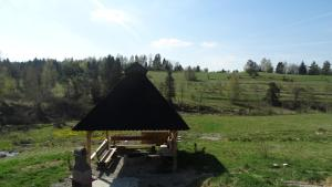 Czarny Potok