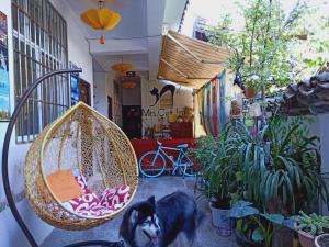 Mao Tai Tai Guest House, Hostince  Lijiang - big - 19