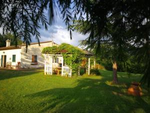 obrázek - Tuscan Green