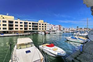 obrázek - Port Moxo