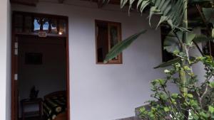 Gallito de las Rocas, Hotely  Cocachimba - big - 5