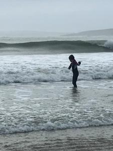 obrázek - Home by the Sea