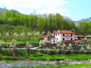 Guest House Ivan - Balkanets