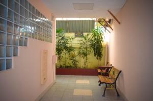 obrázek - Palm Spring center Patong by CHATTHA