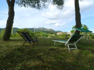 Trilocale con giardino - AbcAlberghi.com