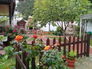 Гостевой дом Фазенда, Пицунда