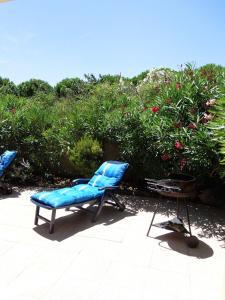 obrázek - Alizés - Bora Bora