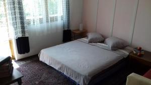 Accommodation in the Center - Sarajevo