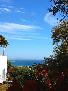 Kavos Hotel Naxos (2 of 62)