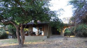 Jumbo Junction Camp