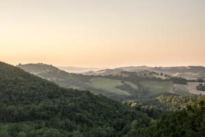 Colleverde Country House, Hotels  Urbino - big - 155