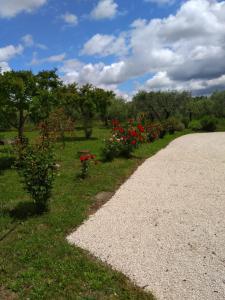 Casa Vacanze Le Rose - AbcAlberghi.com