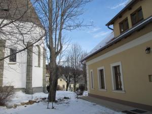 Villa Luef, Apartmanok  Mönichkirchen - big - 16