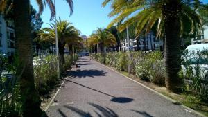 obrázek - 8 Avenue de Banyuls-Sur-Mer