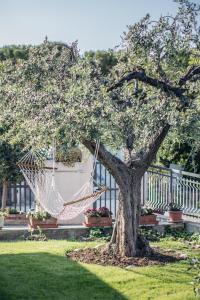 Il Giardino di Remo e Santina - AbcAlberghi.com