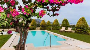 Villa Iris Luxury House, Ville  Malia - big - 13