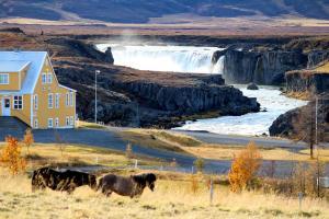 Icelandic Hotels