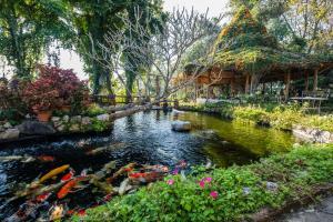 Phu Chaisai Mountain Resort - Ban Rong Khi Noi