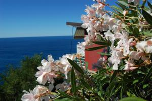 Resort La Francesca - AbcAlberghi.com