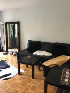 Staufenglück - Apartment - Oberstaufen