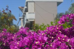 Hostels e Albergues - Eleonas Apartments