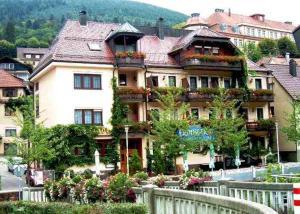 Hotel Restaurant Alte Linde - Calmbach