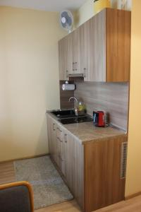 Apartment Ausra, Апартаменты  Нида - big - 8