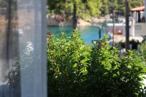 Evilio Alonissos Greece