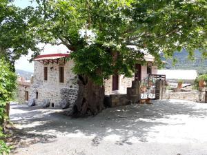 obrázek - Traditional House Koukounara